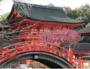 京都 梅 名所