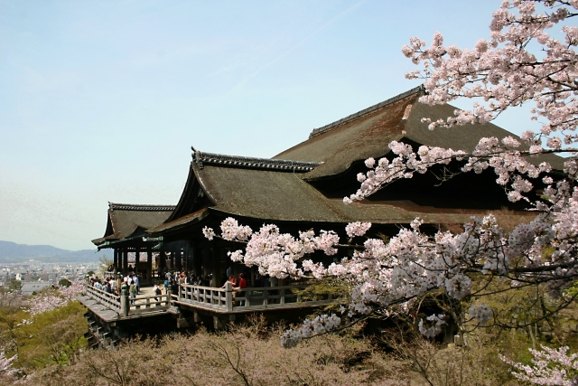 清水寺 桜 ライトアップ 日程